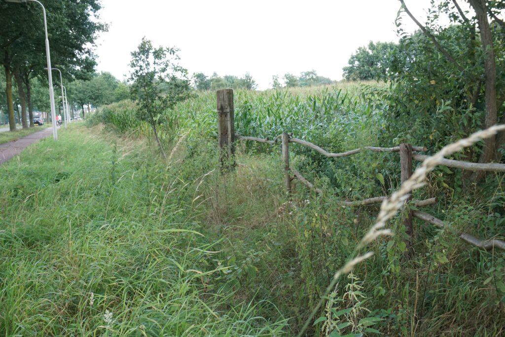 Berkenhout locatie