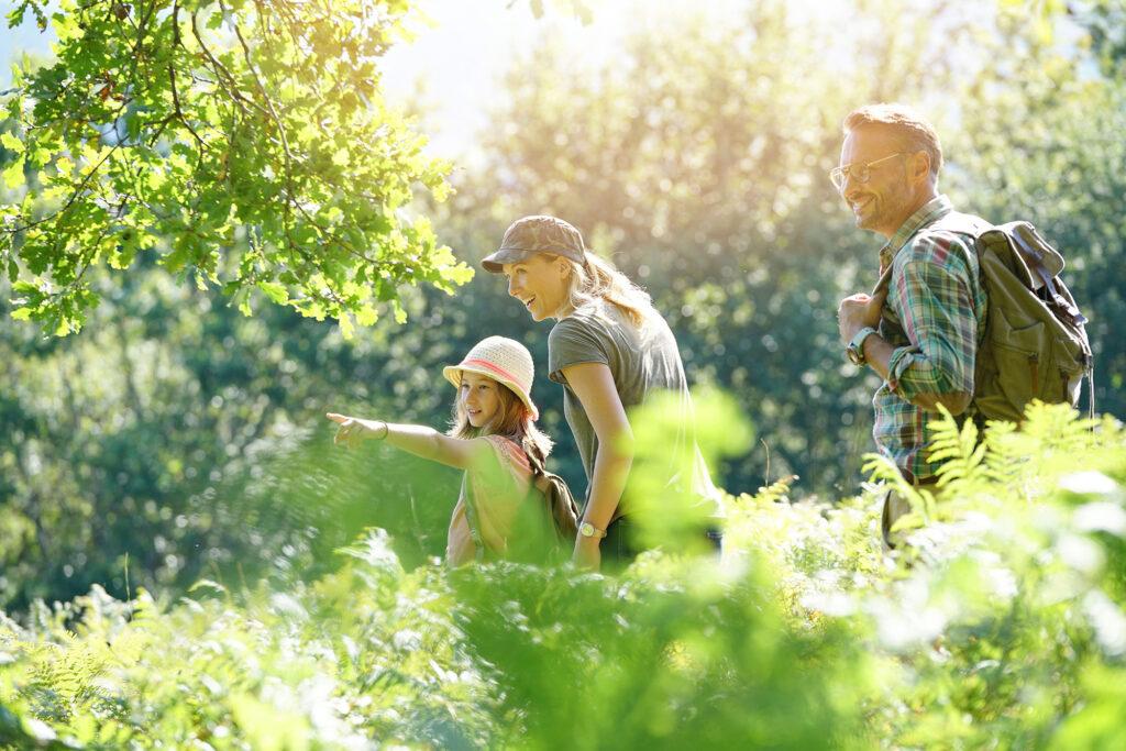 gezin in het groen berkenhout